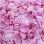 Absolu de rose Damascena - 30 gr